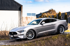 Ford Mustang на дисках TSW BATHURST