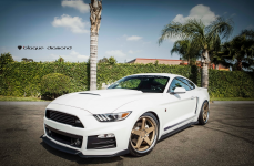 Ford Mustang �� ������ BLAQUE DIAMOND BD-21